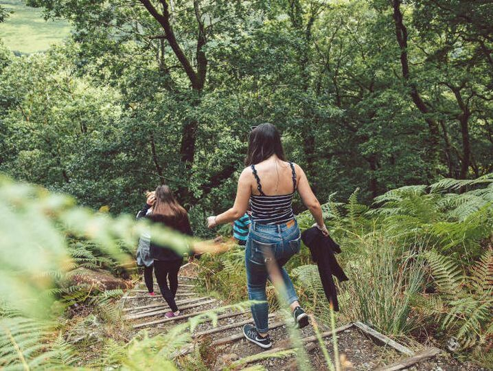 forest bathing workshop hiking tour daylesford mindfulness